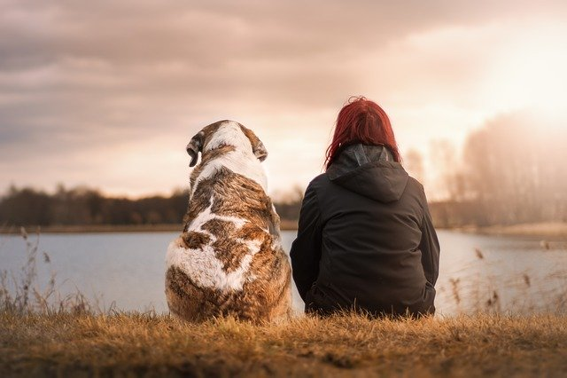 How to Cope with the death of your Loving Pet